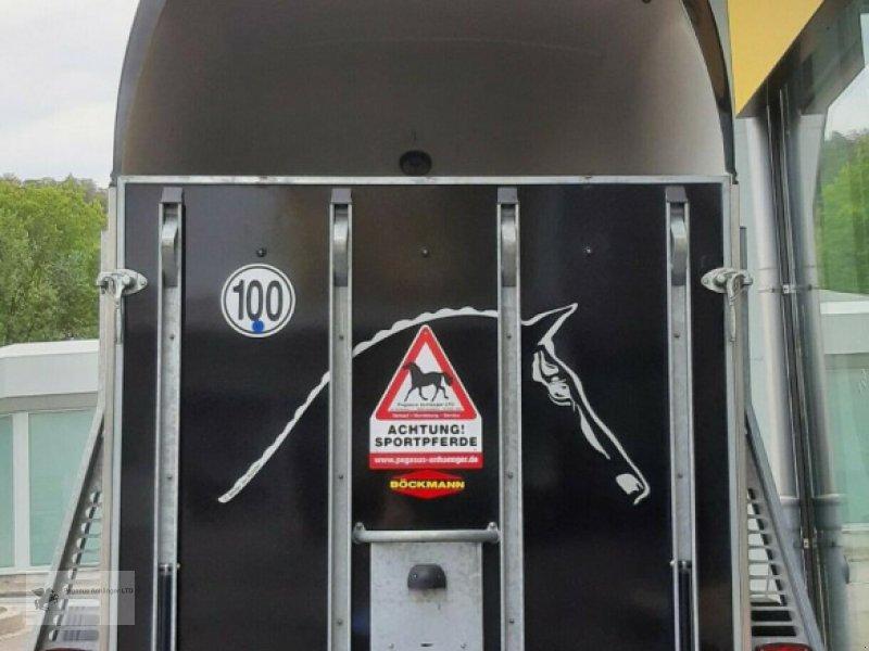Viehanhänger des Typs Böckmann Comfort 2-Pferdeanhänger 2,4to ALUBODEN SK, Gebrauchtmaschine in Gevelsberg (Bild 4)