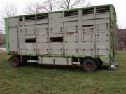 Viehanhänger des Typs Finkl Einstock Vieh oder Schweine Anhänger, Gebrauchtmaschine in Tiefensall