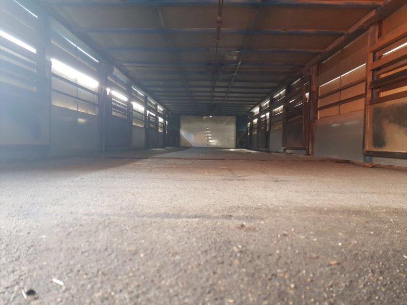 Viehanhänger типа Floor ‼️Viehtransporter‼️Viehauflieger‼️Auflieger‼️Viehanhänger‼️Hühnerstall‼️Hühnermobil‼️, Gebrauchtmaschine в Amerbach (Фотография 10)