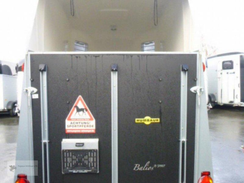 Viehanhänger типа Humbaur Balios Spirit 2-Pferdeanhänger,  NEU 2020, Neumaschine в Gevelsberg (Фотография 7)