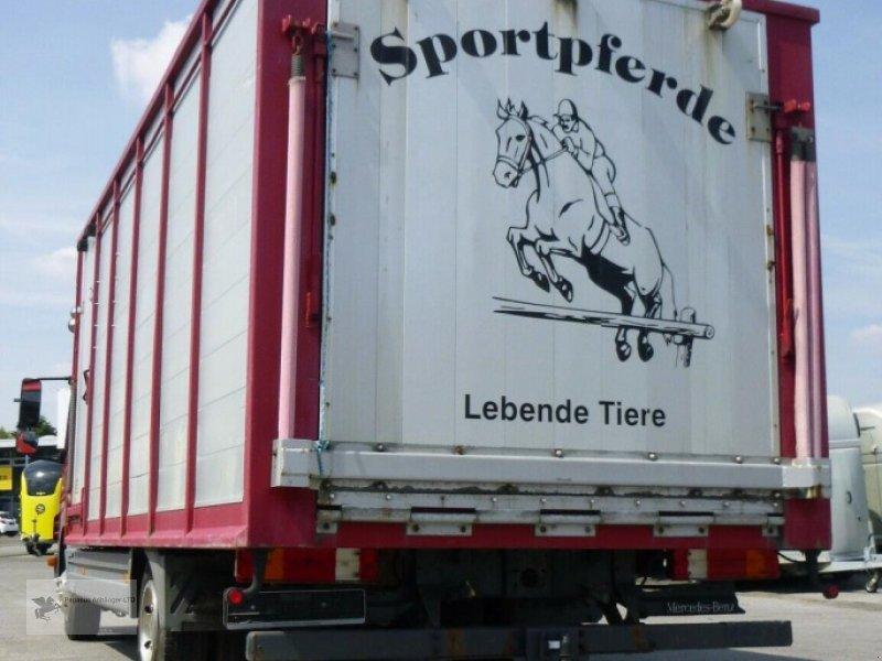 Viehanhänger des Typs Mercedes-Benz Atego 818L Vieh/Pferdetransporter 7,49to VOLLALU, Gebrauchtmaschine in Gevelsberg (Bild 5)