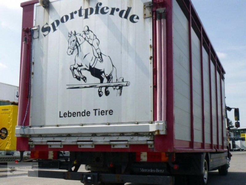 Viehanhänger des Typs Mercedes-Benz Atego 818L Vieh/Pferdetransporter 7,49to VOLLALU, Gebrauchtmaschine in Gevelsberg (Bild 4)