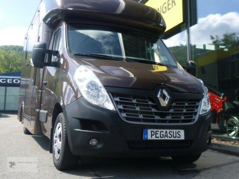 Bild Renault Master  2-Pferdetransporter AHK Hengstgitter
