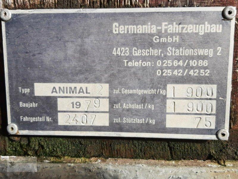 Viehanhänger des Typs Sonstige Animal II Pferde-/Viehanhänger Bastlerfahrzeug, Gebrauchtmaschine in Gevelsberg (Bild 5)