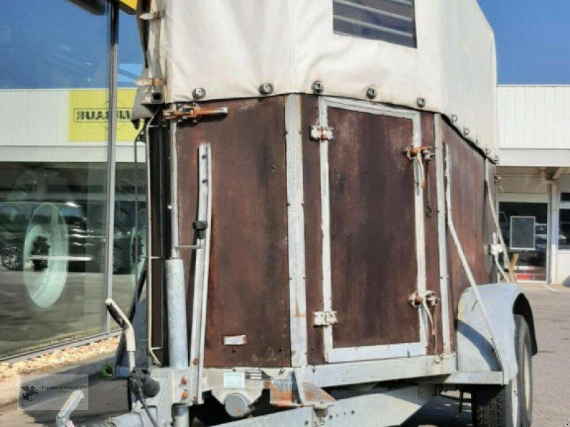 Viehanhänger des Typs Sonstige Duis Viehtransporter Pferdeanhänger 1,5to, Gebrauchtmaschine in Gevelsberg (Bild 1)