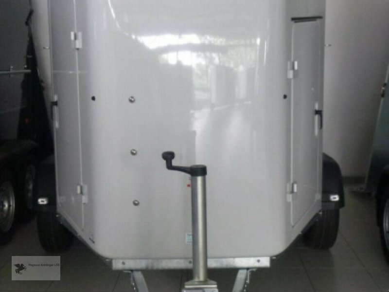Viehanhänger des Typs Thiel Domino Ultra 2-Pferdeanhänger Vollpoly SK, Neumaschine in Gevelsberg (Bild 2)