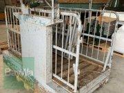 Viehwaage des Typs Sonstige Köwa Viehwaage 25- 1300kg, Gebrauchtmaschine in Fürth