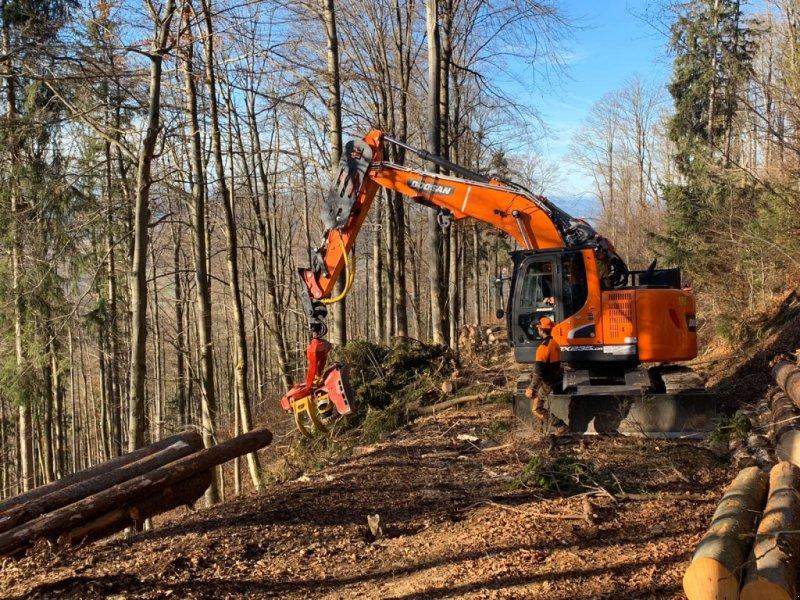 Vollernter des Typs Doosan DX 235 Harvester Woody, Neumaschine in Hutthurm (Bild 1)
