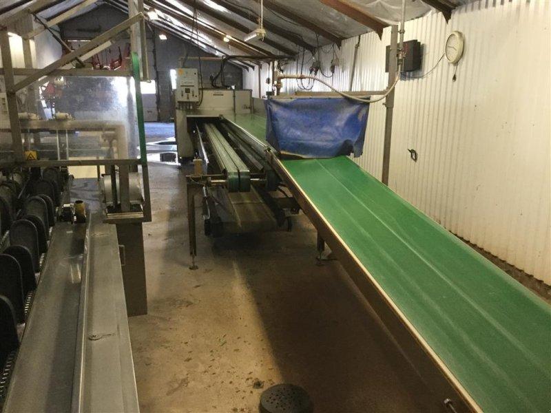 Waschmaschine tip Sonstige Briand PorreVaskelinje+Tapemaskine, Gebrauchtmaschine in Horsens (Poză 5)