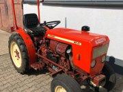 Weinbautraktor tip Krieger KS 33 Schmalspur Traktor Schlepper kein Allrad, Gebrauchtmaschine in Bühl