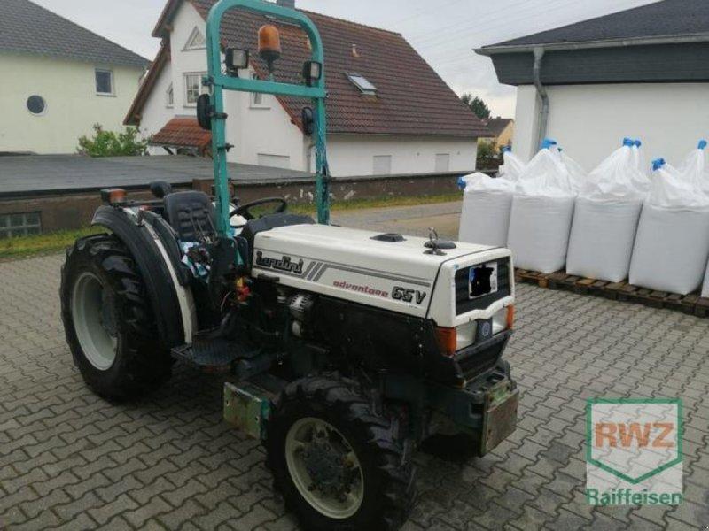 Weinbautraktor des Typs Landini DV 65, Gebrauchtmaschine in Wintrich (Bild 2)