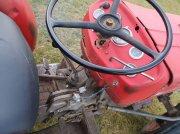 Massey Ferguson 135 V Smalspoor szőlőművelő traktor
