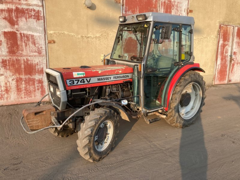 Weinbautraktor des Typs Massey Ferguson 374 V, Gebrauchtmaschine in Beelitz (Bild 1)