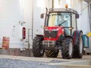 Weinbautraktor des Typs Massey Ferguson MF 3630 F, Neumaschine in Schwechat