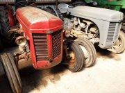 Sonstige Ferguson Tef tractor pt. viticultură