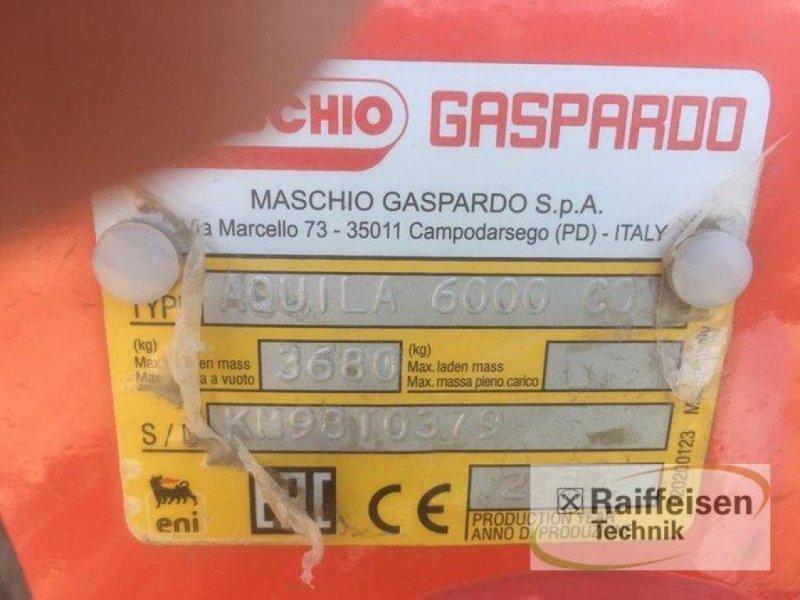 zapfwellenbetriebenes Gerät des Typs Maschio Aquila Rapido Plus 600, Vorführmaschine in Lohe-Rickelshof (Bild 8)