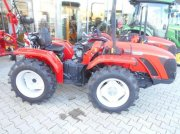Carraro TN5800 MAJOR Weinbautraktor