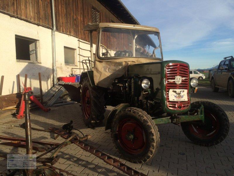 Lanz Aulendorf Hella Diesel D24 Traktor - technikboerse.com