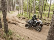 Arctic Cat XC 450 ATV & Quad