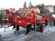 Evers Java WDS-3H R62 Tiefenlockerer