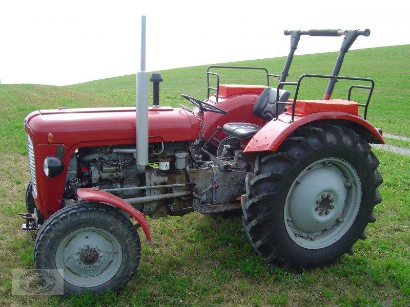massey ferguson fe 35 oldtimer traktor. Black Bedroom Furniture Sets. Home Design Ideas