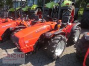 Goldoni CLUSTER 70 RS Obstbautraktor